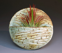 Patti Murtha - Air Plant Pocket